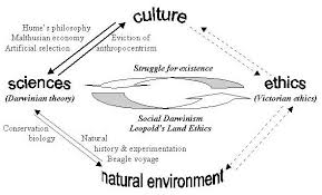 natural law theory illustrated