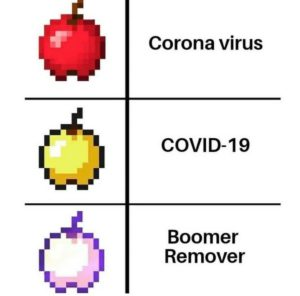 Boomer Remover Chart